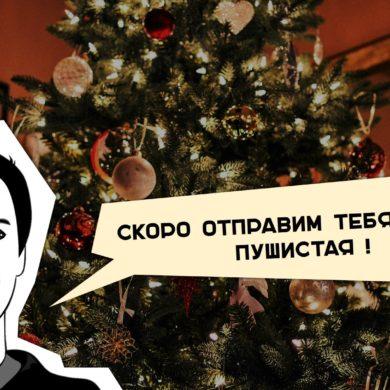можно ли сдавать новогоднюю елку http://grosh-blog.ru