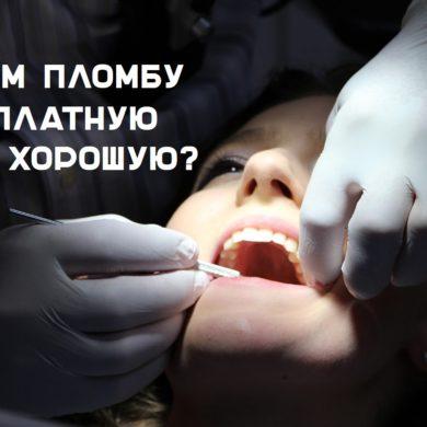бесплатная медицинская помощь https://grosh-blog.ru