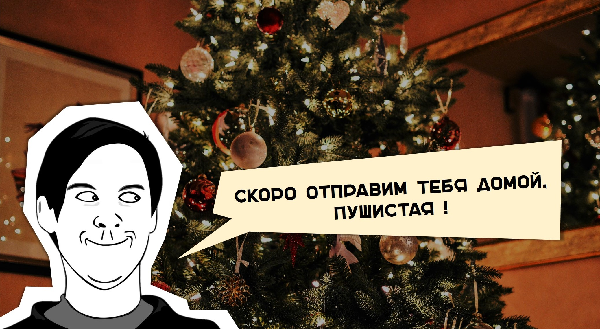 можно ли сдавать новогоднюю елку https://grosh-blog.ru