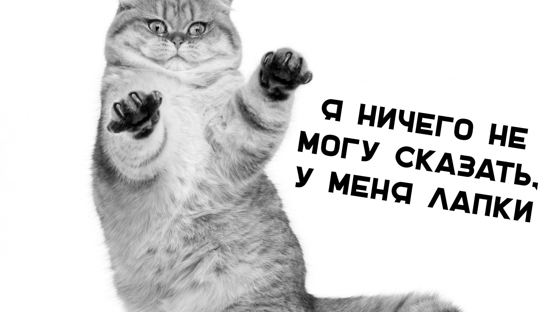 налоговая рассказала https://grosh-blog.ru